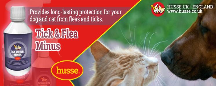 Ticks Fleas